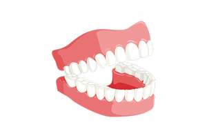 Find the best deals on Dental Implants 13