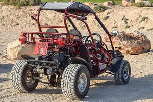 Buggies - 96800 photos