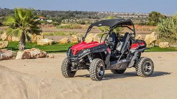 Buggies - 6107 options