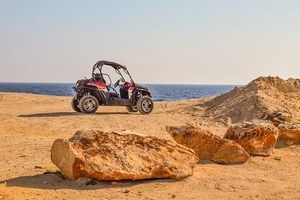Rent A Buggy - 95564 customers
