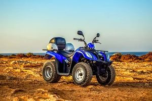 Rent A Buggy - 21157 bestsellers