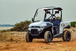 Rent A Buggy - 70674 offers