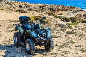 Rent A Buggy - 49085 bestsellers