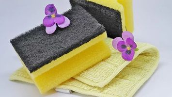End Of Tenancy Cleaning London Prices - 46735 discounts